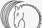 Winged Horse Trust